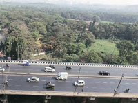 No construction in Aarey Colony till September 10, says NGT