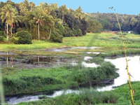 No sanction given for Aranmula airport project