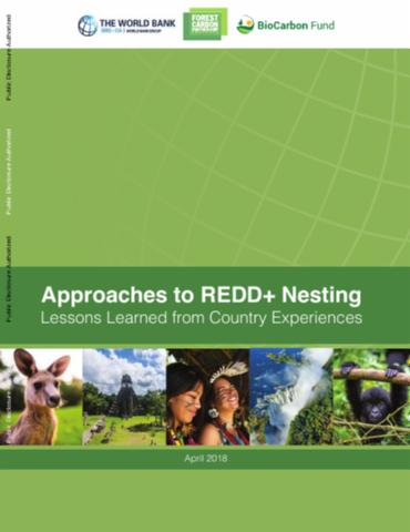 Approaches to REDD+ nesting: lessons learned from country experiences