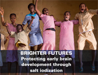 Brighter futures: protecting early brain development through salt iodization