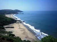 Green panel for relaxing coastal norms: RTI