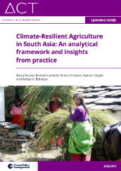Climate-resilient agriculture in South Asia: an analytical framework and insights from practice
