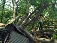 Cyclonic storm kills 42 in Bihar; Purnia worst hit