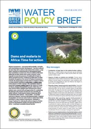 Dams and malaria in Africa: time for action