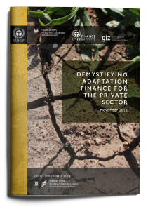 Demystifying adaptation finance for private sector
