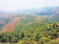 Union min seeks response on Surguja forest rights