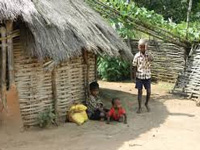 Forest dwellers struggle for land rights under 2006 Act