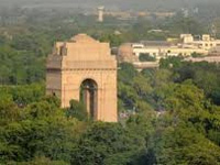 Delhi government mulls city's first tree census