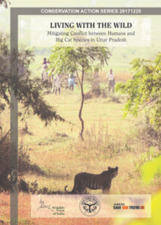 Living with the wild: mitigating conflict between humans and big cat species in Uttar Pradesh