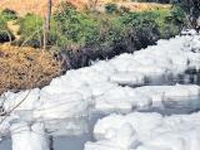 Four STPs to check pollution of Bellandur lake