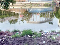 Deadline looms, govt begins lake cleaning