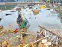 Post Ganesha idol immersion, toxic contents rise in lakes