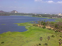 Collector told to give report on Powai lake pollution