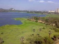 Mumbai: Dedicated research station to monitor Powai lake health