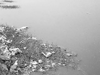 What's a lake, NGT asks Haryana govt