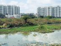 54 per cent of City lakes gobbled up, finds IISc study