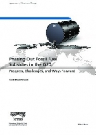 Phasing out fossil fuel subsidies in the G20: progress, challenges, and ways forward