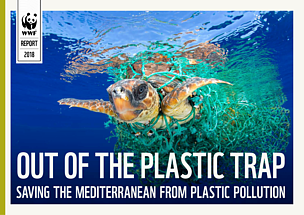 Out of the plastic trap: saving the Mediterranean from plastic pollution