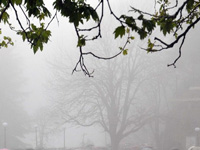 Parts of western suburbs see drizzle, air quality moderate