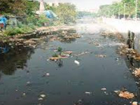 Assess Godavari pollution levels, plan remedial steps