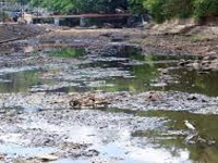 Poor water quality in Manimala river basin