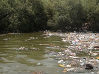 River Pollution: MPCB issues closure notices to 100 industrial units along Mithi