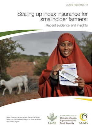Scaling up index insurance for smallholder farmers: recent evidence and insights