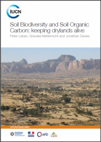 Soil biodiversity and soil organic carbon: keeping drylands alive