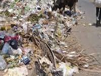 Waste from Delhi dumped in city colony, RWA goes to NGT