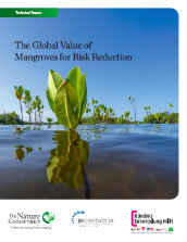 The global value of mangroves for risk reduction
