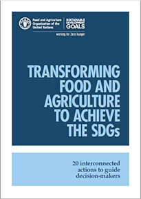 Transforming food and agriculture to achieve the SDGs