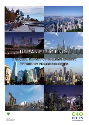 Urban efficiency: a global survey of building energy efficiency policies in cities