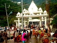 NGT raps J&K Govt over rehab plan of mules at Vaishno Devi