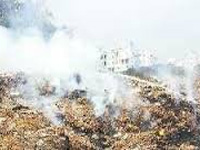 NGT issues show cause notice on waste burning in Ghaziabad