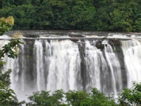 Athirappilly project renews biodiversity debate