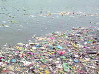 NGT pulls up DMRC for dumping waste in Yamuna