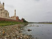 NGT slams ADA over construction on Yamuna floodplains