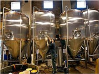 Green Tribunal directs closure of illegally run Tangi brewery