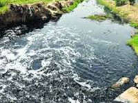 Rajasthan minister seeks check on water pollution in Punjab