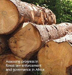 Assessing progress in forest law enforcement and governance in Africa