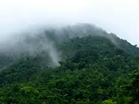 Protect Eastern Ghats for healthy plains: Experts