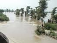 UP flood: toll rises up to 75
