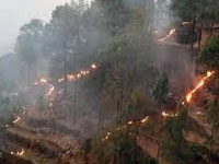 Paramilitary forces receive training on forest fire management