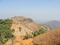 NGT asks environment, forest dept to file affidavit in the Parsik hill quarrying case
