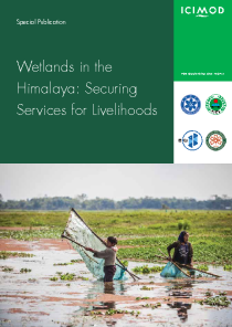 Wetlands in the Himalaya: securing services for livelihoods