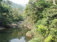 Western Ghats: five States yet to submit reports