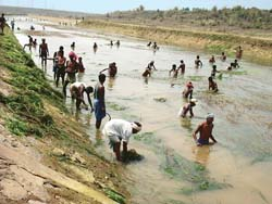 Bureaucracy restricts potential of Orissa`s <i>pani</i> panchayats