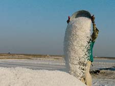 Saltpan workers in Gujarat served eviction notice from sanctuary