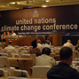 The Bali roadmap for global climate policy: new horizons and old pitfalls