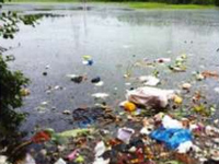 Lokhandwala Lake a birdwatcher's paradise lost?